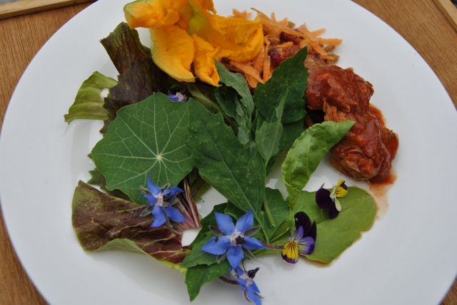 Fat hen salad with mackerel courgette and other flowers